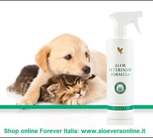 Aloe Veterinary Formula: spray all'Aloe Vera per animali